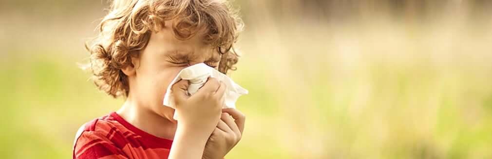 Alerjik nezle tedavisi